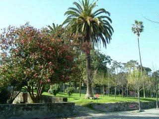Quinta_Covelo (2)